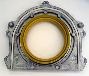 LUF100420 Crankshaft Rear Oil Seal